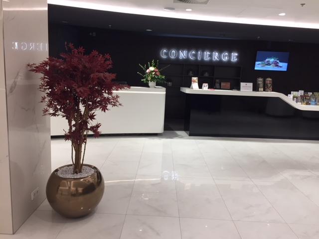 Umělé stromy a designové květináče v interiéru Clarion Hotel Praha