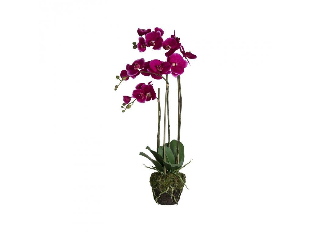 Hedvábné květiny