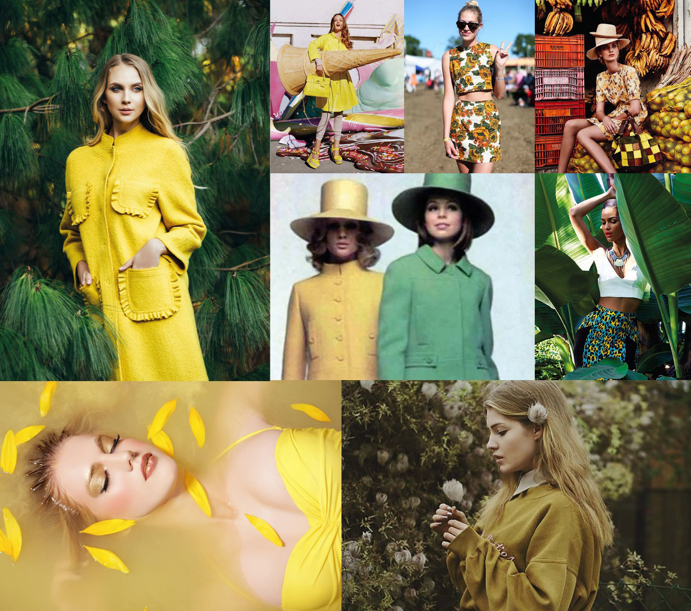 flamboyant-yellow-inspiration