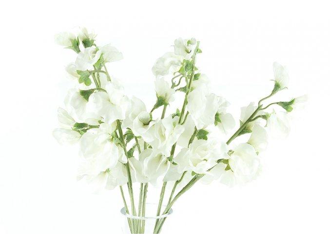 Hrachor -bílý