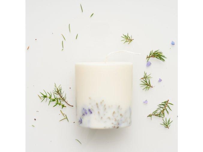 Juniper&limonium candle