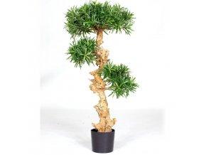 PODOCARPUS BONSAI - umělá rostlina