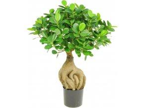 21701 ficus panda bonsai kunstpflanze 01