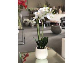 Bílá umělá orchidej ve vázičce EDG H63