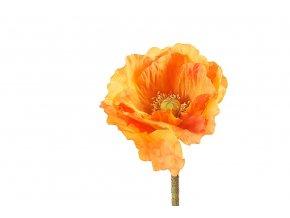 Poppy -orange