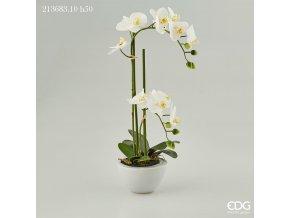 Bílá umělá orchidej ve váze EDG H50
