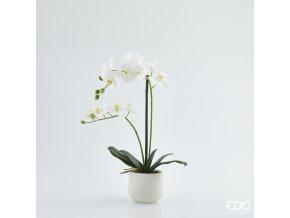 Bílá umělá orchidej ve vázičce EDG H53