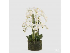 Bílá umělá orchidej Phalaenopsis s mechem 90cm