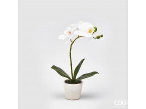 Bílá umělá orchidej ve vázičce EDG 33cm