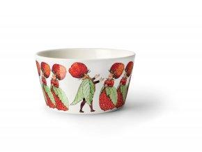 Beskow Bowl StrawberryFamily iso
