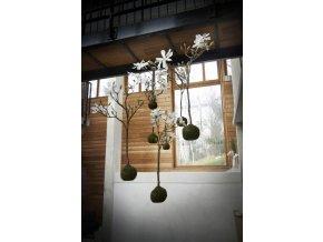 Hanging magnolia H50