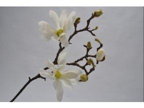 Magnolie SILK-KA - bílá - 66 cm