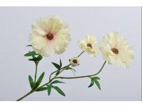 Ranunculus - pryskyřník SILK-KA - růžovo žlutý - 56 cm