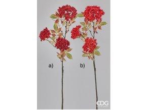 Červená, oranžová jeřabina EDG H33