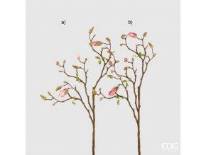 Růžová magnolie EDG H82