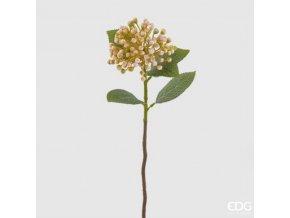 Větvička Jasmínu - krémová EDG H43