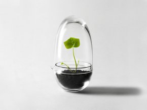 Mini skleník Grow