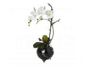 Phalaenopsis ve vázičce 64cm