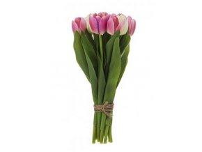 Svazek tulipánů SIA h30 růžové hladké