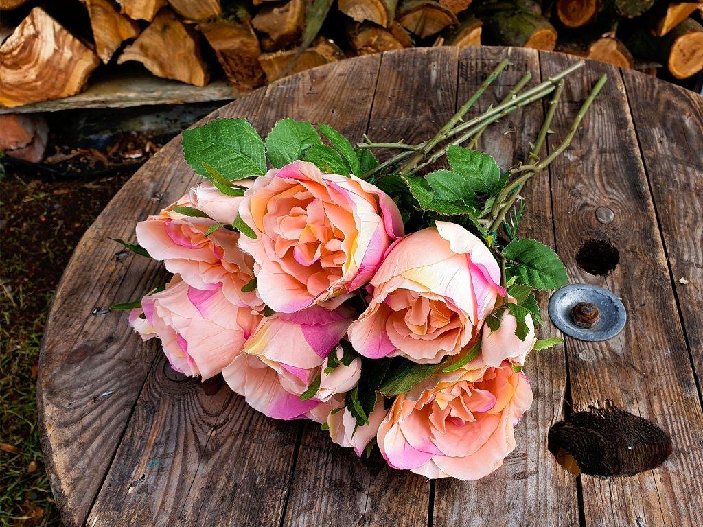 Květiny růže oranžové