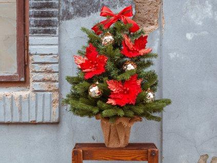 Ozdobený stromeček VÁNOČNÍ HVĚZDA 75 cm