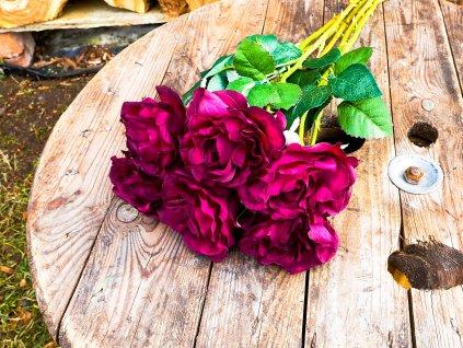 Květiny růže červené