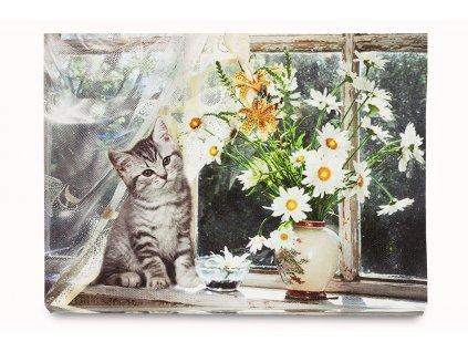 Svítící obraz květin a kočky s LED světly 40 x 30 cm