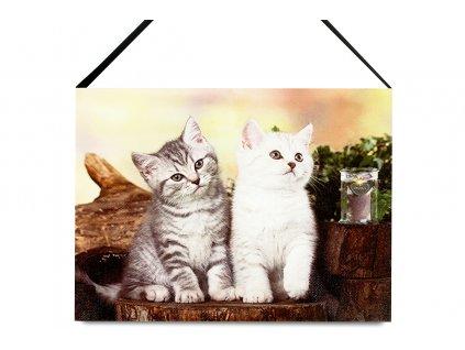 Sada 2 ks obrazů: Kočky s LED světlem 20 x 15 cm