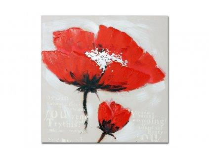Obraz na plátně, červený mák 80 x 80 cm