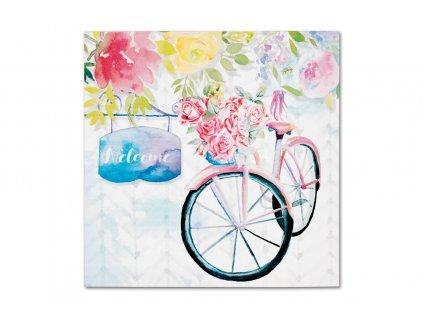 Sada 4 ks obrazů: Květinové opojení 28 x 28 cm