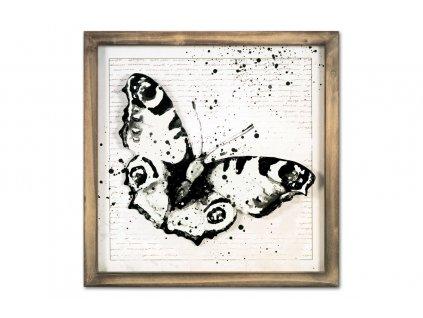 Obraz v rámu s kovovou dekorací motýla 30 x 30 cm