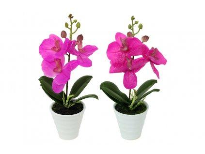 Sada 12 ks dekorací: Orchideje tmavě růžové v keramickém květináči 20,4 cm