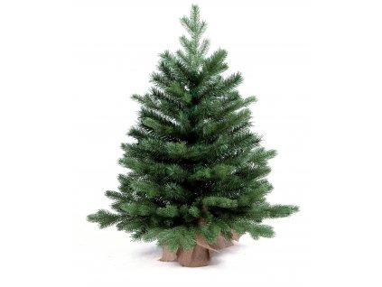 Vánoční stromek jedle Bernard v květináči 75 cm