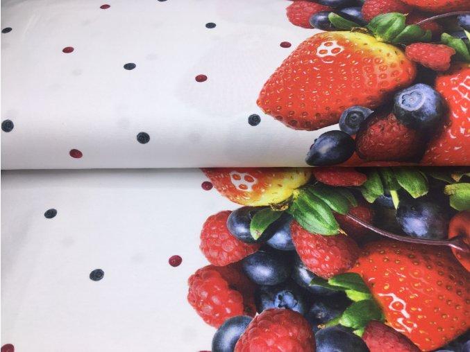 Úplet - bordura ovoce - bílá