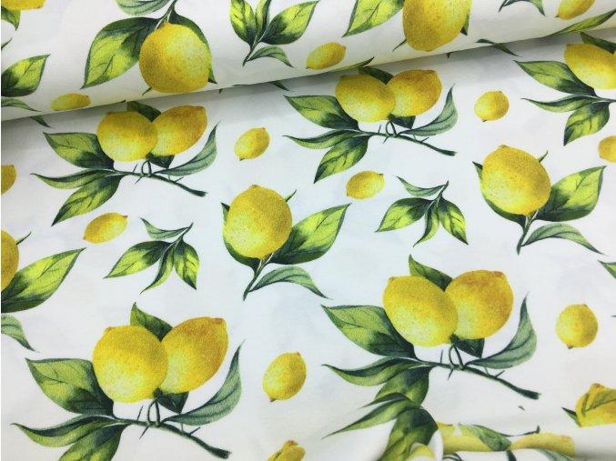Úplet - citrony - digitální potisk