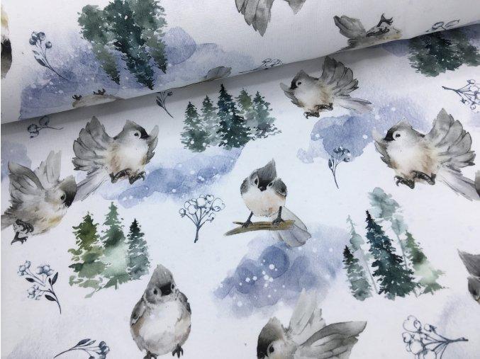 Teplákovina - ptáčci a sníh