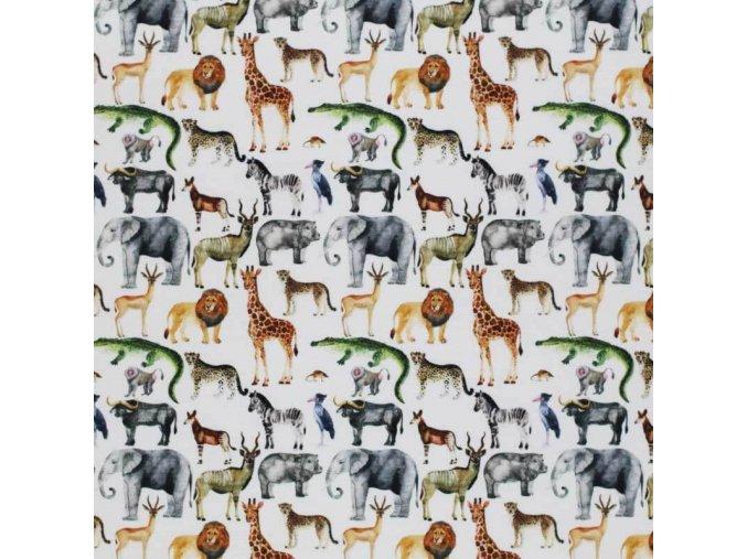 Jersey Fabric Digital Safari 1 800x800