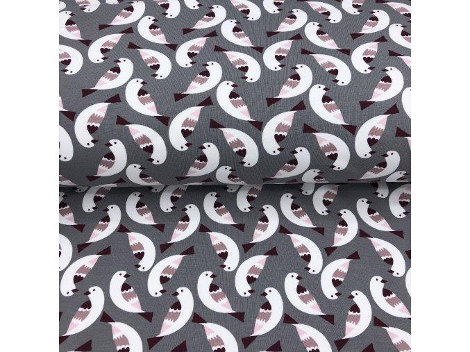 Bio teplákovina - ptáčci na šedé - počesaná