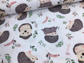 Bavlna - ježci