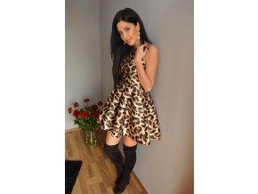 Tori vzor Leopard