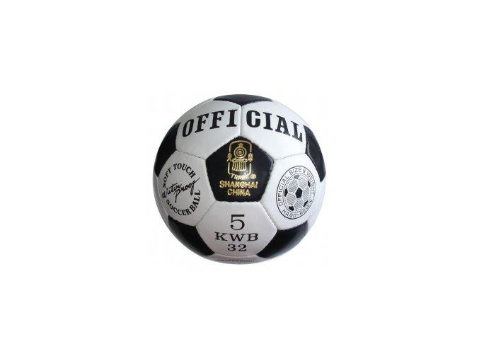 Fotbalový tréninkový míč Official, vel. 5