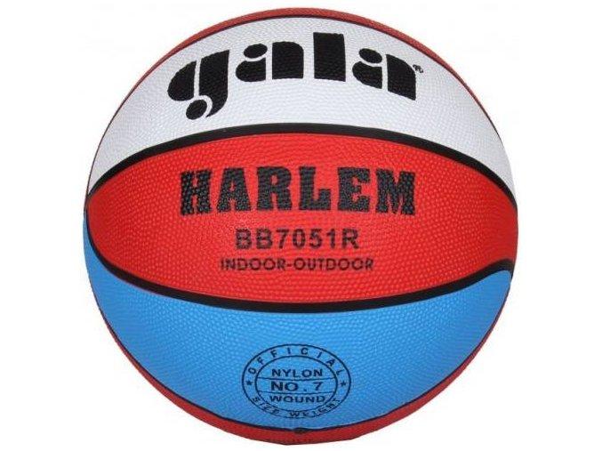 basketbalovy mic gala harlem