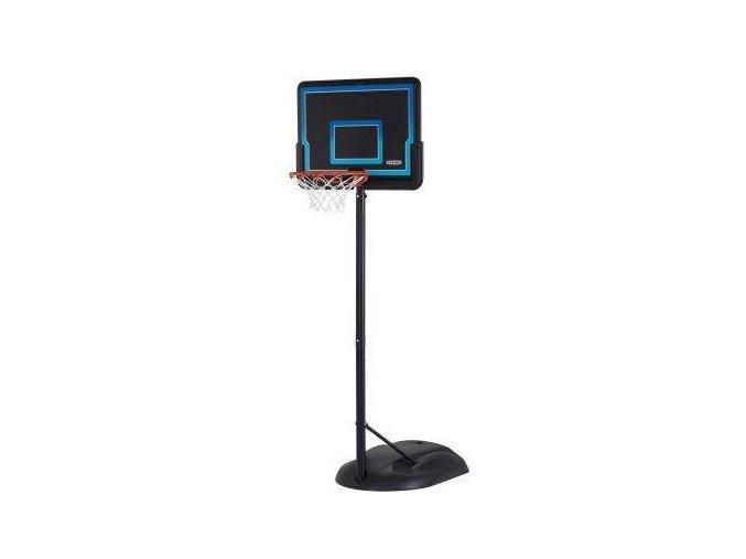 basketbal lifetime