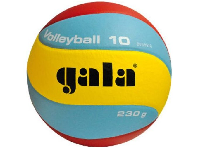 Gala Volleyball 10 BV5651S 230g