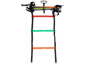 agility zebrik multicolour