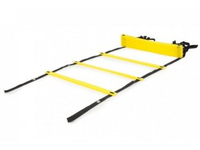 zebrik speed agility ladder
