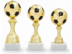 Poháry Fotbal 2607