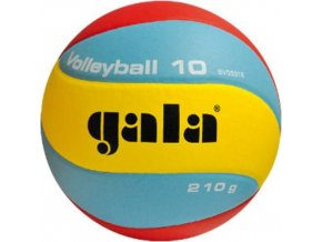 Gala Volleyball 10 BV5551S 210g