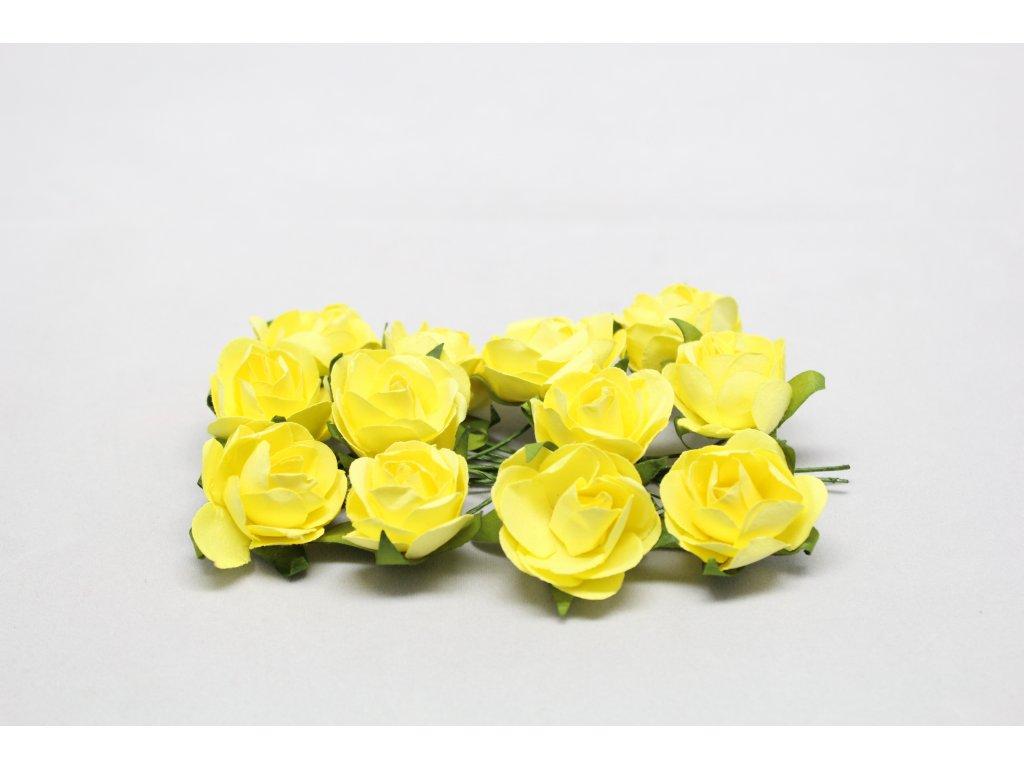Růžičky papírové