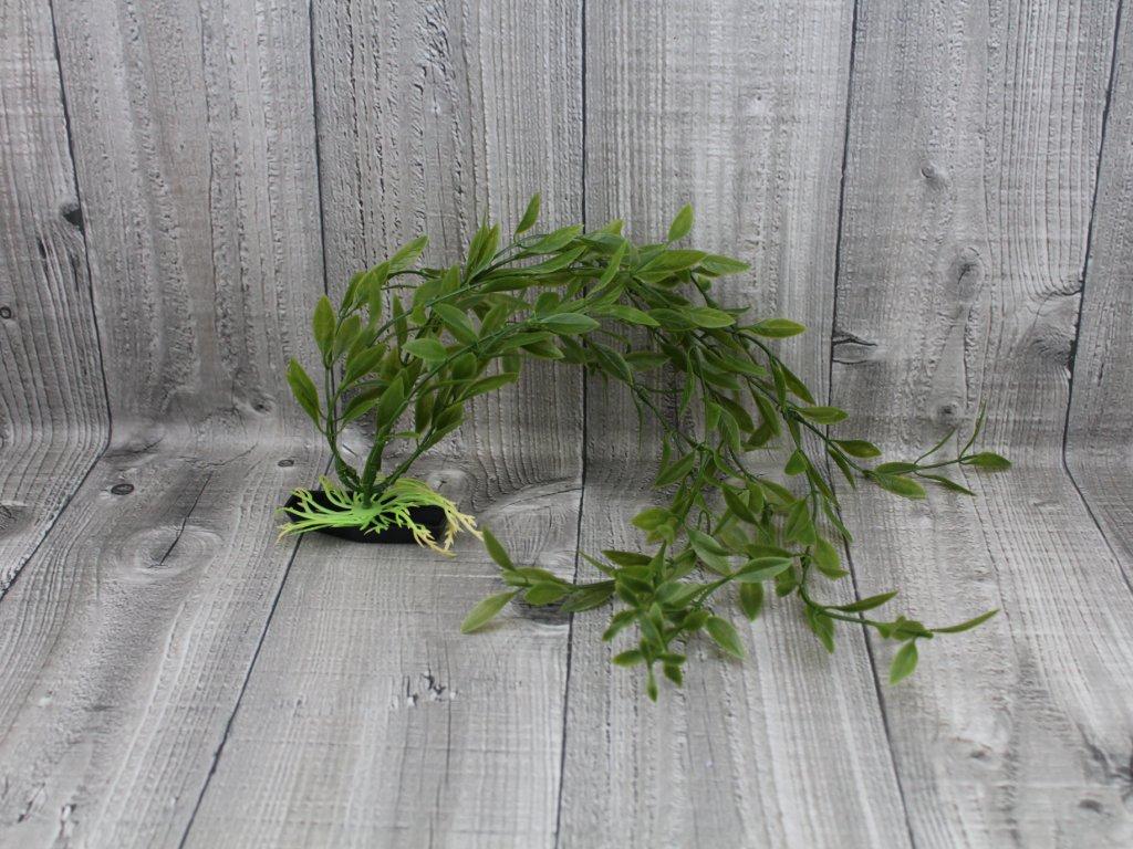 Vodní rostlina umělá-Rotala